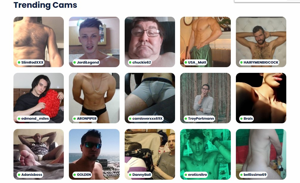 IGayChat trending cams